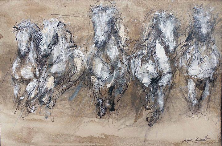 Horse Study 1